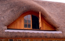 Thatch Roof Inset Window